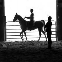Harris Riding Academy