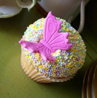 The Painted Cupcake