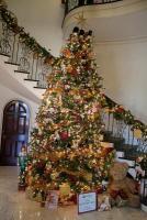 Cheekwood Christmas Tree