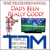 Home Theater & Wall Mounting for Christmas in Nashville