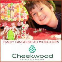 Family Gingerbread Workshops