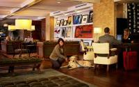 Nashville Hutton Hotel is Pet Friendly