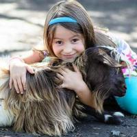 Family fun park, Petting zoo, playground, wagon rides, pony rides
