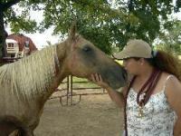 Natchez Trace Riding Stable