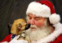Pet Photo w/Santa at Pet Smart