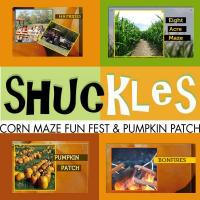 Shuckles Fall Festival