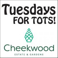 Tuesdays For Tots