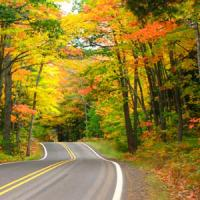Enjoy a fall drive to view the best in Nashville and Middle Tennessee Colors