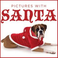 Events for your Pets this Christmas Season