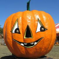 Nashville Area Pumpkin Patches