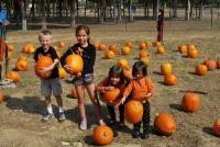 Pumpkin Patch and Fall Family Fun at Lucky Ladds Farms