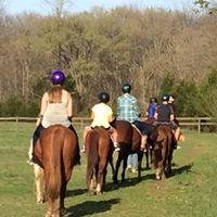 Horseback Riding, Riding Lessons, Horses, Stables,Lessons,Trail rides, Horse Trails