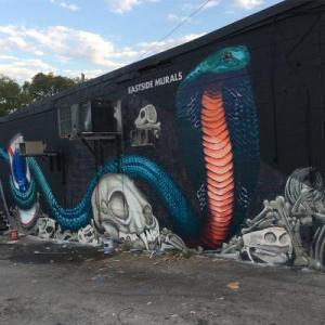 Resolute Fest 2018, Resolute Fest, Cobra, The Cobra, The Cobra Nashville