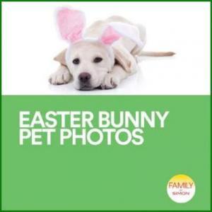 Easter Bunny Pet Photos