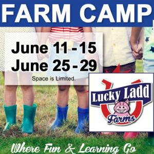 Lucky Ladd Farm Summer Camp