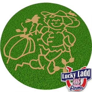 Lucky Ladd Corn Maze