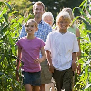 Corn Maze Adventure at Lucky Ladd Farms