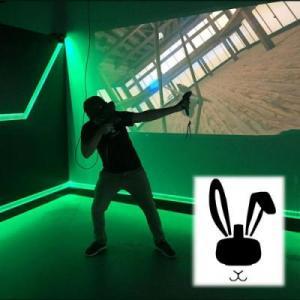The Rabbit Hole Virtual Reality Arcade