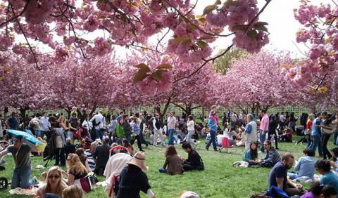 Crowd enjoying a springtime festival at Centennial Park in downtown Nashville