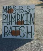 Mrs. B's Pumpkin Patch