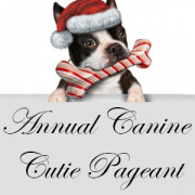Annual Canine Cutie Pageant