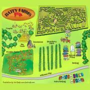 Batey Farms Corn Maze & Pumpkins