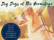 Dog Days at The Hermitage