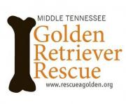 Middle Tennessee Golden Retriever Rescue