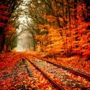 Super Fall Foliage Trip