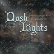nash rides, nash lights, holiday lights tour, christmas lights, nashville christmas lights