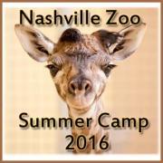 Nashville Zoo's Summer Camps
