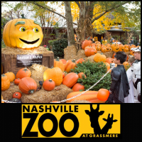 Boo at the Zoo - Nashville Tennessee
