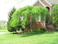 ProMow Property Management