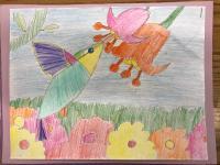 drawing, children