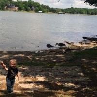 Little Boy at Shutes Branch Recreation Area