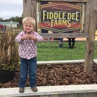 Fun at Fiddle Dee Farms