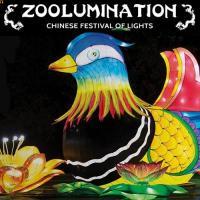 Zoolumination Chinese Festival of Lights
