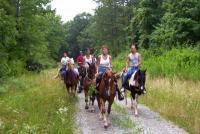Cedars of Lebanon Horseback Riding