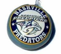 Nashville Hockey