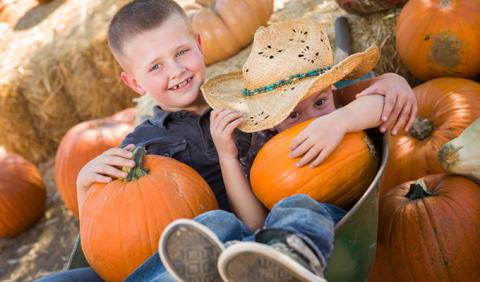 Brothers playing around at Nashville area Pumpkin Patch