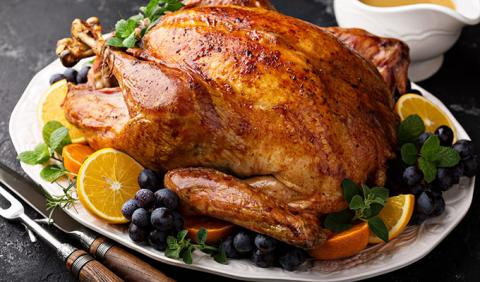 Large Turkey for Thanksgiving