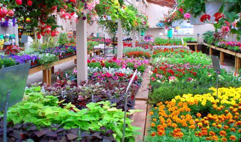 Nashville area garden center