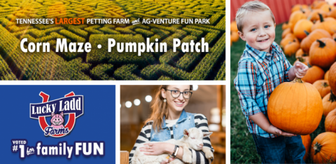 Kids playing at Lucky Ladd Farm's Pumpkin Patch