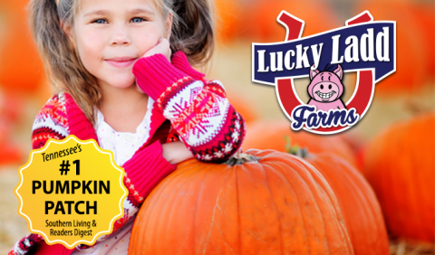 Kids and family love the pumpkin patch at Lucky Ladd Farms in Nashville Tennessee