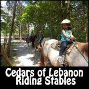 Cedars of Lebanon Riding Stables