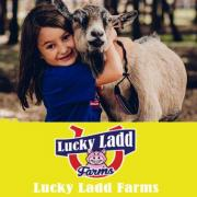 Lucky Ladd Farms opening April 2020