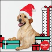Pet Photos with Santa Opry Mills Mall