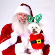 Santa Paws at Green Hills Mall