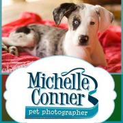 Michelle Conner Photography