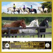 Natchez Trace Stables